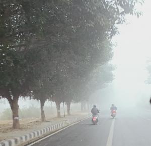 Cyclone Gulab makes landfall in Andhra Pradesh; Odisha experiences light rain